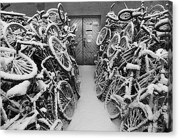 The Bike Shop Canvas Print by Robert Lacy