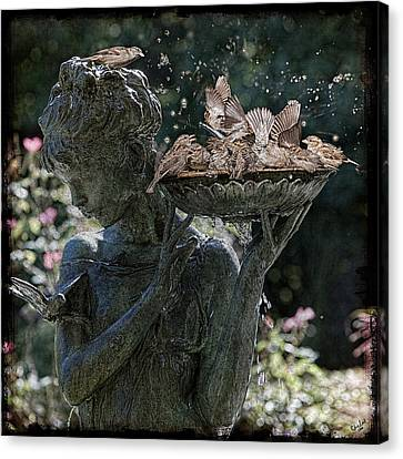 The Bird Bath Canvas Print
