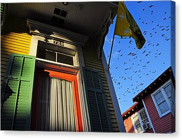 The Birds Canvas Print by Skip Hunt