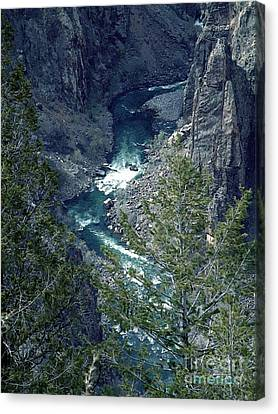 The Black Canyon Of The Gunnison Canvas Print by RC DeWinter