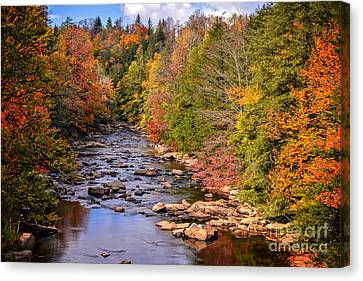 The Blackwater River In Autumn Color Canvas Print