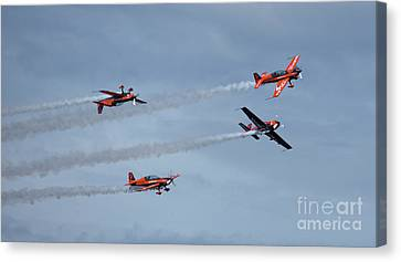 The Blades Canvas Print by Nichola Denny