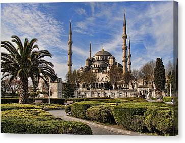 The Blue Mosque In Istanbul Turkey Canvas Print by David Smith