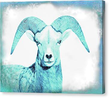 Canvas Print featuring the photograph The Blue Ram by Jennie Marie Schell