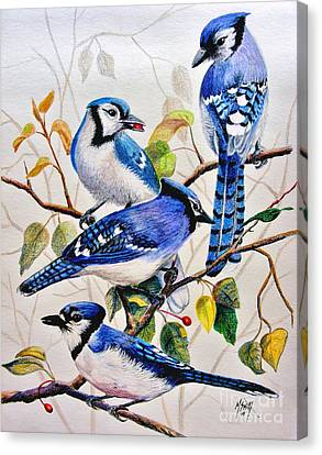 Bluejay Canvas Print - The Blues by Marilyn Smith