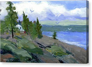 The Bluff Canvas Print by Mary Byrom