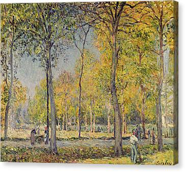 The Bois De Boulogne Canvas Print by Alfred Sisley