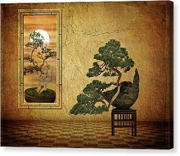 Bonsai Canvas Print - The Bonsai Room by Jessica Jenney