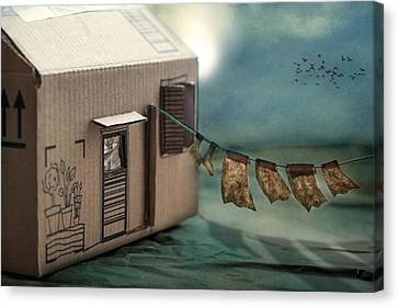 The Box That Was A House Canvas Print by Maggie Terlecki