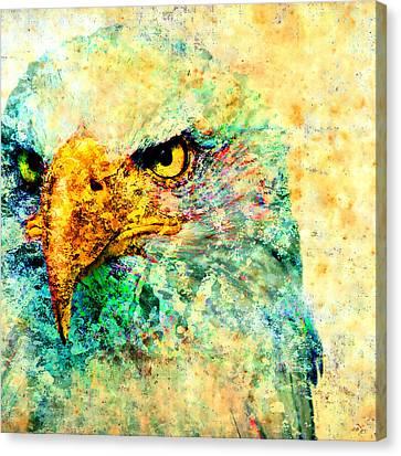 The Brave Bold Bald Eagle Canvas Print