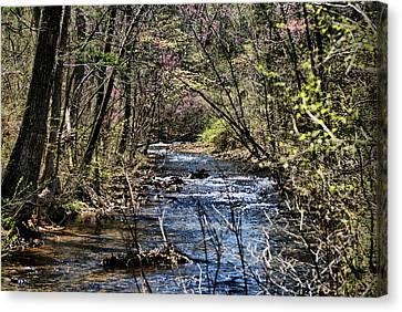 The Brook Canvas Print by Rick Friedle