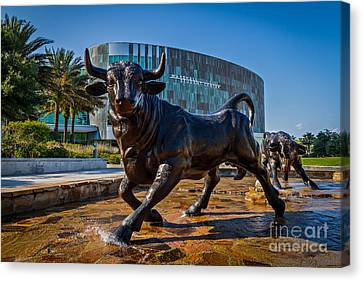 The Bulls Canvas Print by Karl Greeson