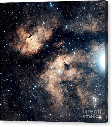 The Butterfly Nebula Canvas Print by Charles Shahar