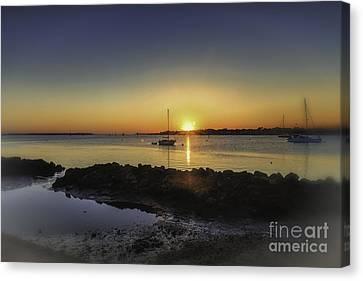 The Calm At Sunrise Canvas Print by Mary Lou Chmura