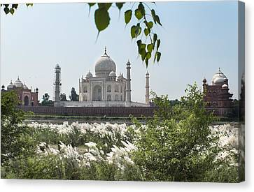 The Calm Behind The Taj Mahal Canvas Print