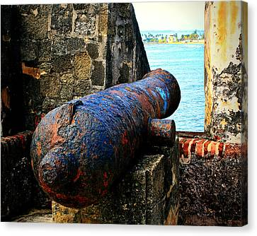 The Cannon  Canvas Print