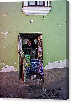 Canvas Print featuring the photograph The Cat In The Doorway by Ron Dubin