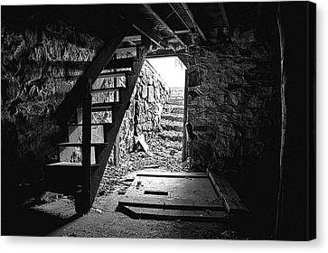 The Cellar Canvas Print by Phil Koch