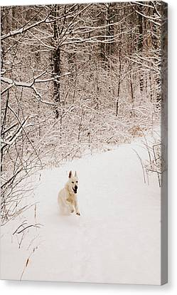The Chase Canvas Print by Cheryl Helms