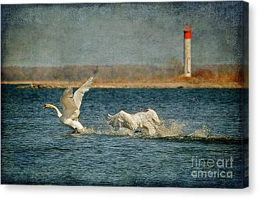 The Chase Is On Canvas Print by Lois Bryan