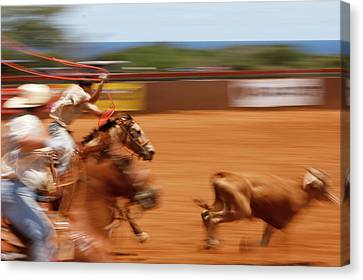 Canvas Print featuring the photograph The Chase by Roger Mullenhour