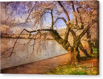 The Cherry Blossom Festival Canvas Print by Lois Bryan