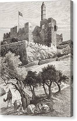 Camel Canvas Print - The Citadel Of Jerusalem Seen From The by Vintage Design Pics