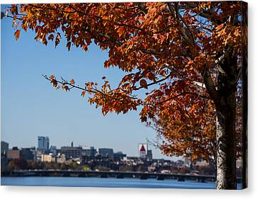 The Citgo Sign Through The Trees Boston Ma Charles River 2 Canvas Print by Toby McGuire