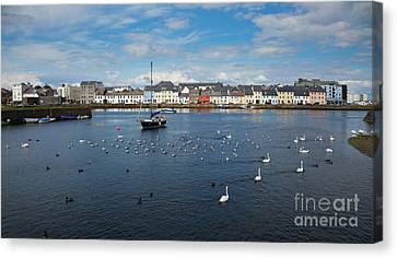 The Claddagh Galway Canvas Print by Gabriela Insuratelu
