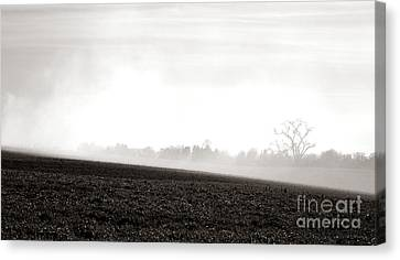 The Clearing Smoke Canvas Print by Olivier Le Queinec