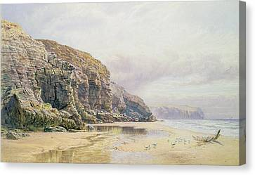 Feeding Canvas Print - The Coast Of Cornwall  by John Mogford