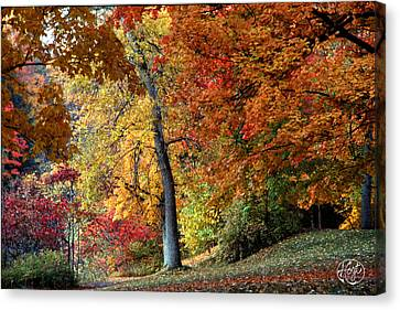 The Colors Of Letchworth Canvas Print by Brad Hoyt