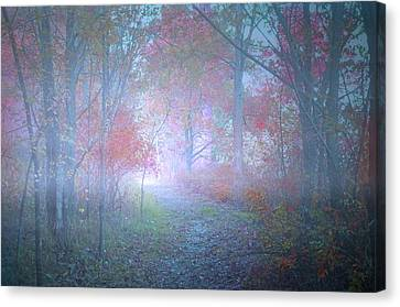 The Colours Hidden By An October Fog Canvas Print by Tara Turner