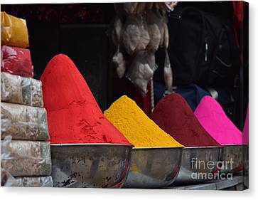 The Colours Of Holi Canvas Print by Mini Arora