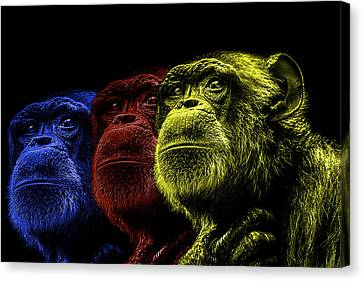 The Colours Of Trepidation  Canvas Print by Paul Neville