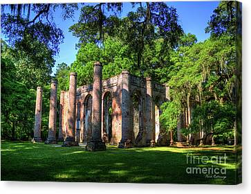 The Columns Old Sheldon Church Ruins Canvas Print by Reid Callaway