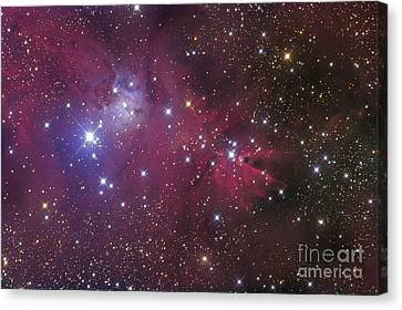 Deep Space Canvas Print - The Cone Nebula by Roth Ritter