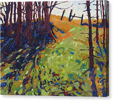The Copse Canvas Print by Phil Chadwick