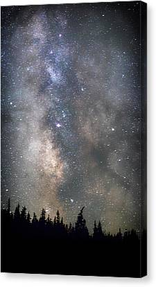 Canvas Print featuring the photograph The Core by Cat Connor