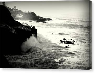 The Cove Canvas Print by Nature Macabre Photography