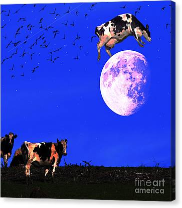The Cow Jumped Over The Moon . Square Canvas Print by Wingsdomain Art and Photography