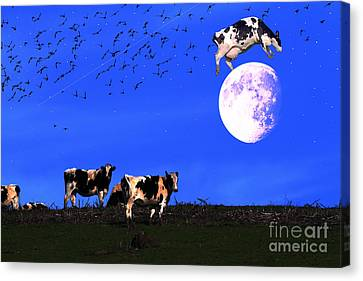 The Cow Jumped Over The Moon Canvas Print by Wingsdomain Art and Photography