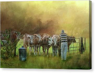Canvas Print featuring the photograph The Cow Whisperer by Wallaroo Images