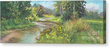The Creek At 1302 Canvas Print by Terri  Meyer