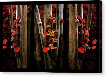 Canvas Print featuring the photograph The Crimson Forest by Jessica Jenney