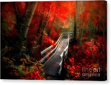 The Crimson Forest Canvas Print by Tara Turner