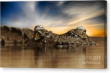 Canvas Print featuring the photograph The Crocodile by Christine Sponchia