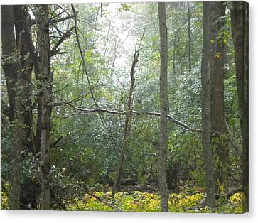 Canvas Print featuring the photograph The Cross In The Woods by Diannah Lynch