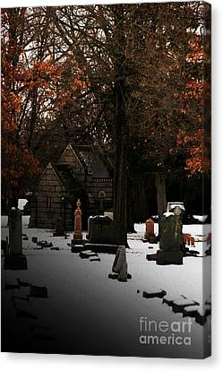 The Crossing Canvas Print by Linda Shafer
