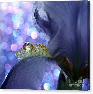 Purple. Iris. Buds Canvas Print - The Crystal Ball Of Nature by Krissy Katsimbras